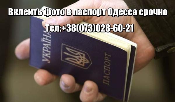 Вклеить фото в паспорт Одесса срочно